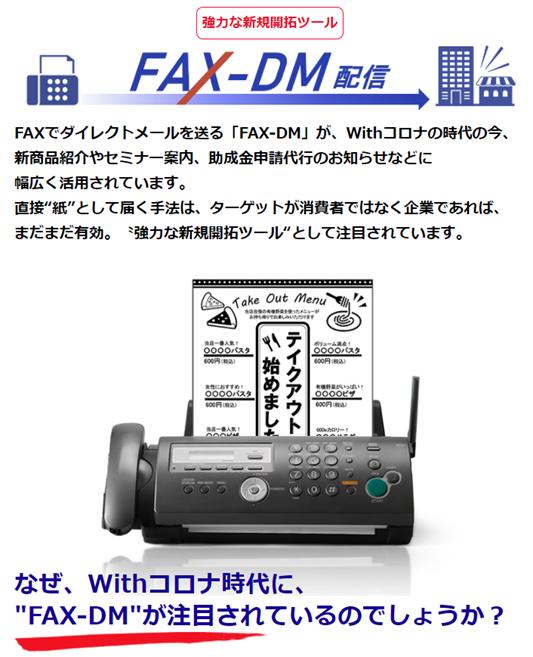 スカイクルーズfax-dm